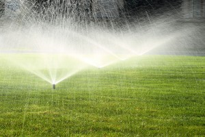 Reducing The Cost Of Your Sprinkler System Usage